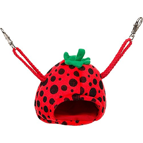 Small Animal Strawberry - 2