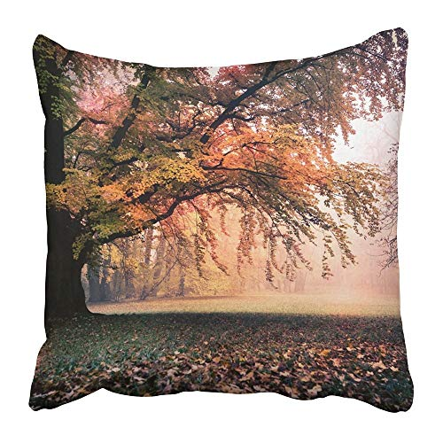 Jbralid Yellow Autumn Old Park in Fall Germany Europe Cool Forest Garden Landscape Leaves Nature Outdoors Pillow Cover Cotton Indoor Home Decor Throw Pillow Case 18x18 in