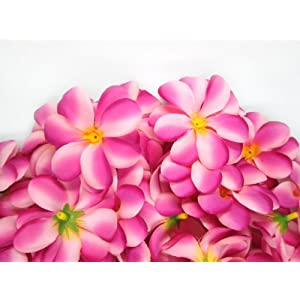 "(100) Two-Tone Pink Hawaiian Plumeria Frangipani Silk Flower Heads - 3"" - Artificial Flowers Head Fabric Floral Supplies Wholesale Lot for Wedding Flowers Accessories Make Bridal Hair Clips Headbands Dress 87"