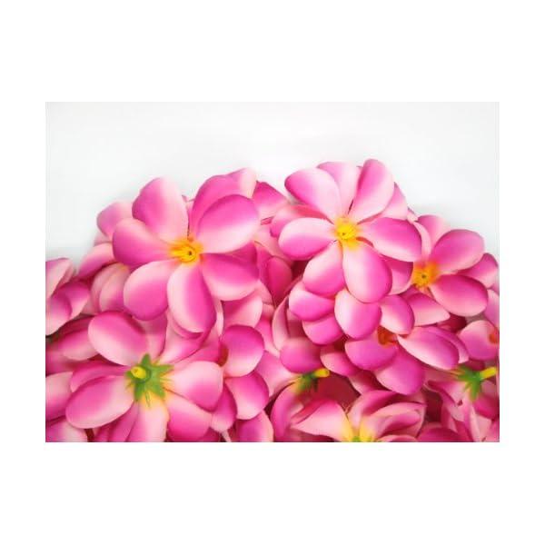 (100) Two-Tone Pink Hawaiian Plumeria Frangipani Silk Flower Heads – 3″ – Artificial Flowers Head Fabric Floral Supplies Wholesale Lot for Wedding Flowers Accessories Make Bridal Hair Clips Headbands Dress