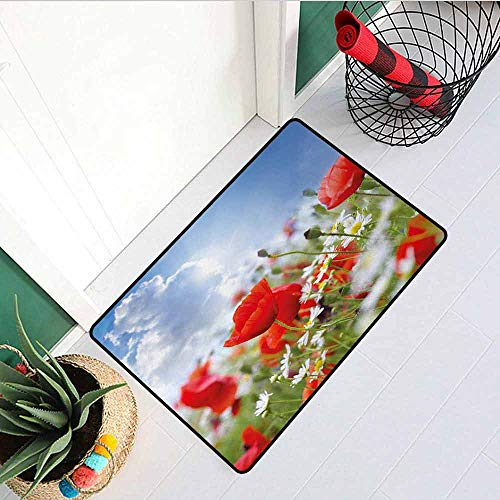 - GloriaJohnson Country Universal Door mat Idyllic Spring Meadow with Poppy and Daisy Flowers Sunny Sky Clouds Garden Design Door mat Floor Decoration W19.7 x L31.5 Inch Multicolor