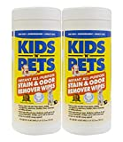 KIDS 'N' PETS Brand Stain & Odor Remover Wipes, 40 count canister, 2-pack