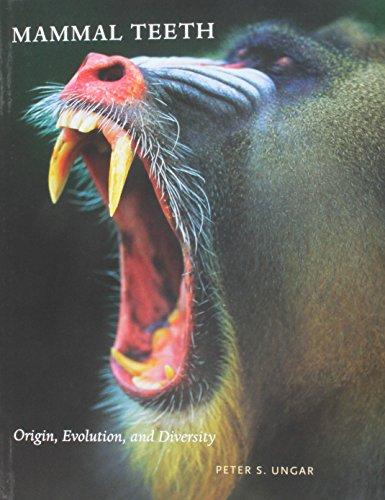 Mammal Teeth: Origin, Evolution, and Diversity (Reader A Text Policing)