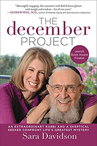 book cover of The December Project