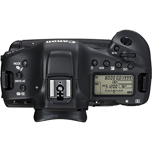 51hDZCK ziL - Canon EOS-1DX Mark II DSLR Camera (Body Only)