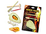 Amber Fossil Dig - Find the insects within the