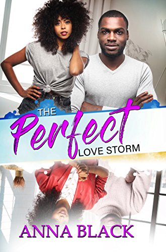 The Perfect Love Storm by [Black, Anna]