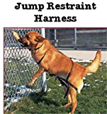 Jump Restraint Harness for Dogs, Prevents Jumping