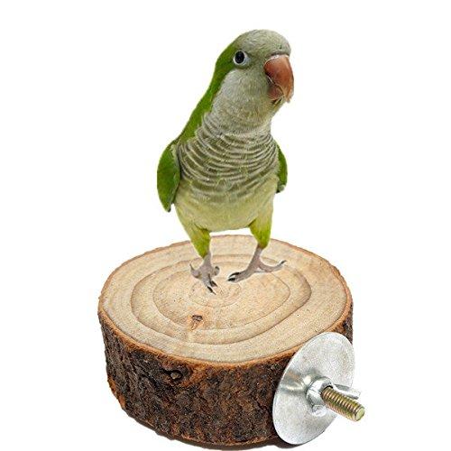 bazaar-8cm-parrot-wooden-stand-pet-bird-hanging-cage-perch-platform-bird-holder