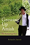Growing up Amish : The Rumspringa Years, Stevick, Richard A., 142141371X