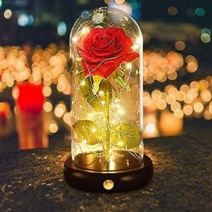 shirylzee Rosa Eterna Kit,La Bella e La Bestia Rose Cupola di Vetro con Base Pino Luci LED Lampada Magici Decorazioni per Feste di Compleanno Anniversario di Matrimonio Fidanzamento Natale (Rosso) 2 spesavip