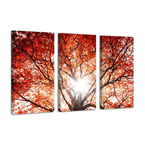 - Landscape Picture Nature Wall Art: Red Maple Tree in Forest at Sunlight Photographic Print on Wrapped Canvas for House Decoration