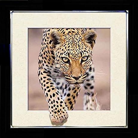 Amazon.com - 3D Enhanced Picture Frame - 5D Lenticular 3d Picture ...