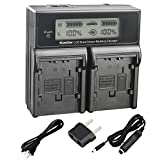 Kastar LCD Dual Smart Fast Charger for Panasonic CGR-DU07, CGA-DU07and PV-GS31, PV-GS33,PV-GS34, PV-GS35, PV-GS39, PV-GS400, PV-GS500, PV-GS50, PV-GS50S, PV-GS55 Digital Camcorder