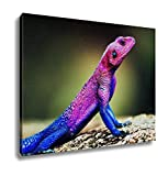 Ashley Canvas, The Mwanza Flatheaded Agama On Rock Serengeti Tanzania In Africa, Home Decoration Office, Ready to Hang, 20x25, AG6089002