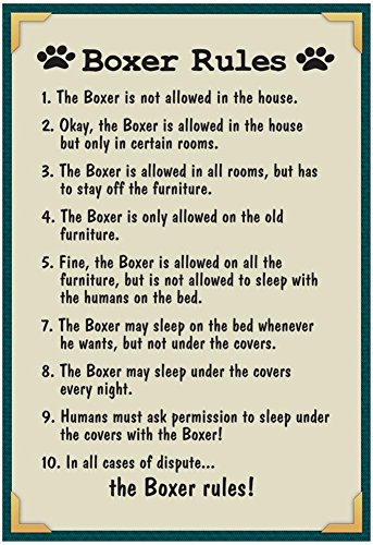 Boxer House Rules Poster with Hanger