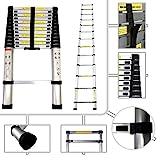 Todeco FR1HOG200065 elescopic ladder, Foldable Ladder, 12.5 feet