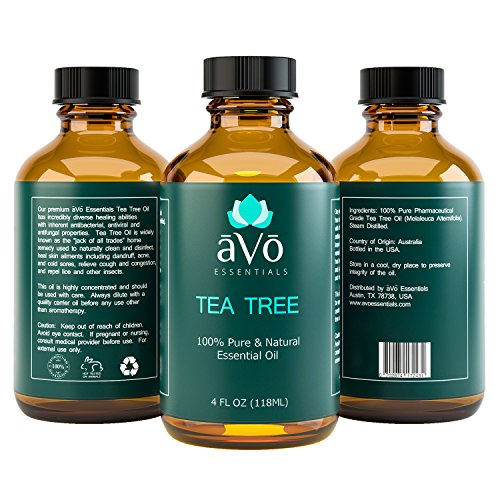 aVo Tea Tree Essential Oil for Toenail Fungus and Dandruff Treatment - 4 Ounce