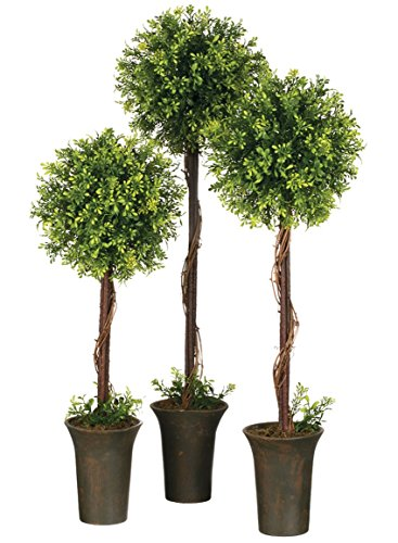 - Sullivans 19804TOP Decorative Artificial Potted Tree Plants, Tealeaf Berry, Green, 3