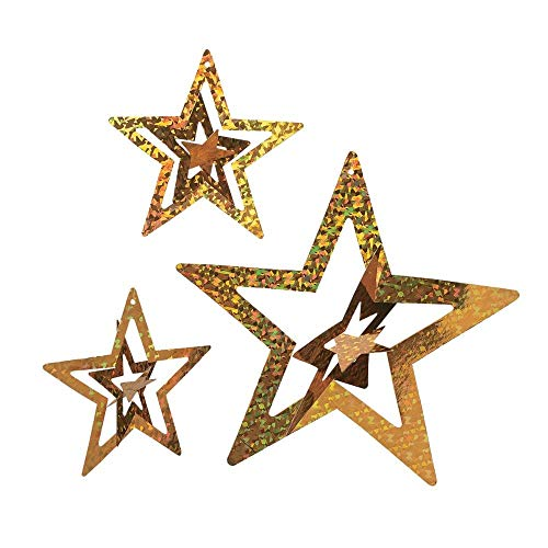 Foil Gold Stars (1 dz) by Fun Express