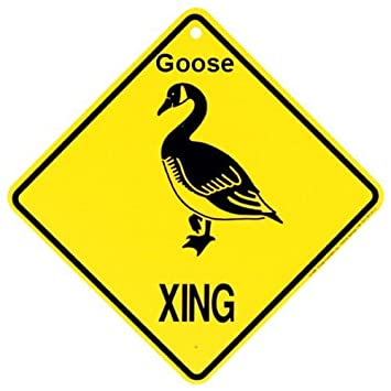 Goose Xing