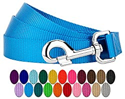 Country Brook Design - Vibrant 25 Color Selection - 1 Inch Nylon Dog Leash