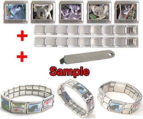 FidgetFidget Koala Bear Photo 18mm Mega Stainless Steel Italian Charms Bracelet + Tool HG61