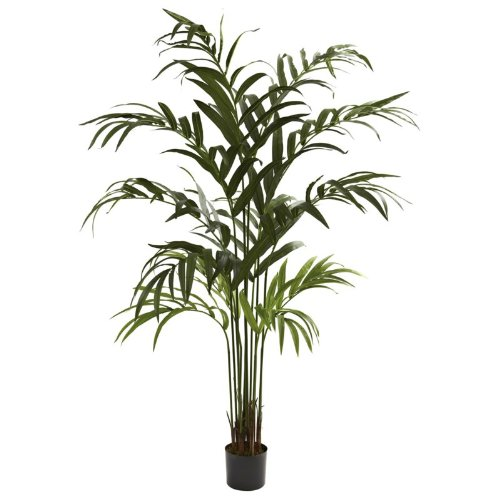 Nearly Natural - 6Ft Kentia Palm Tree (Kentia Palm Tree)