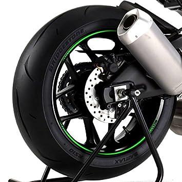 PUIG - 8431V : 8 Tiras arco adhesivos llantas vinilos pegatinas rueda PREMIUM: Amazon.es: Coche y moto