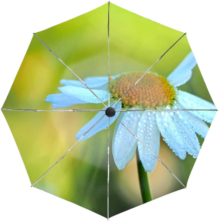 Auto Open//Close Button Daisy Petals Drops Blur Compact Travel Umbrella with Windproof Double Canopy Construction
