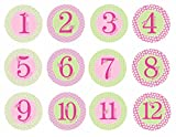 Pearhead First Year Monthly Milestone Photo Sharing Baby Belly Stickers - 1-12 Months - Pink