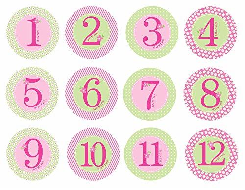 [해외]Pearhead Pearhead Watch Me Grow 월간 마일스톤 사진 담요 기념품 세트 / Pearhead First Year Monthly Milestone Photo Sharing Baby Belly Stickers, 1-12 Months, Pink