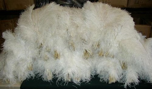 Buy white feathers for centerpieces bulk