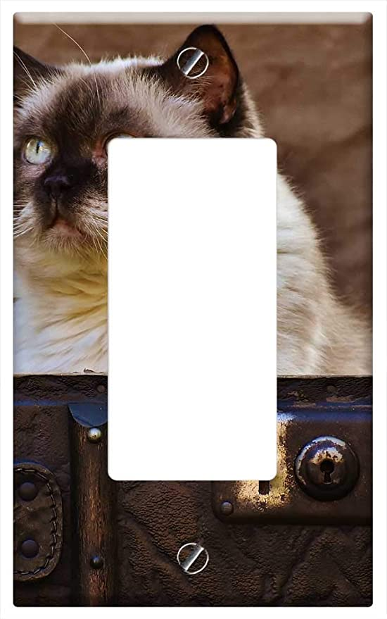3dRose lsp/_4495/_2 Siamese Cat Double Toggle Switch