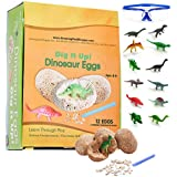 ADS Ultimate 12 Dinosaur Eggs Science Kit–Dig Up Dino Fossils and Assemble Skeleton Set! - Each Includes 1 Piece of Chisels
