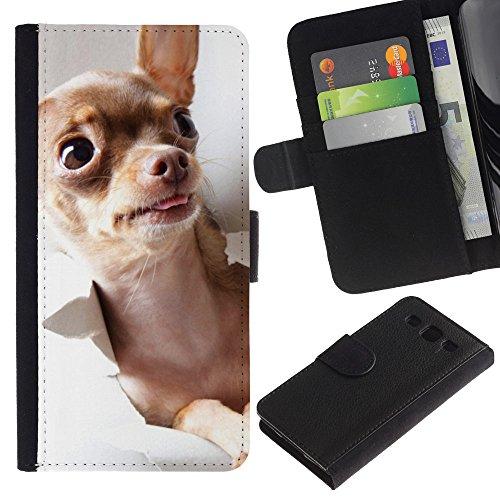 Be Good Phone Accessory // Caso del tirón Billetera de Cuero Titular de la tarjeta Carcasa Funda de Protección para Samsung Galaxy S3 III I9300 // Chihuahua Gold Brown Tiny Purse Dog