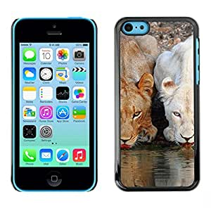 Qstar Arte & diseño plástico duro Fundas Cover Cubre Hard Case Cover para Apple iPhone 5C ( Lion Cute Nature Water Africa Animals)