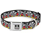 """Buckle-Down Seatbelt Buckle Dog Collar - Mickey Mouse w/Glasses Poses Gray - 1"""" Wide - Fits 15-26"""" Neck - Large"""