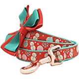 Blueberry Pet Snowman Making Christmas Designer Dog Leash Bowtie, 5' 3/4'', Medium, Leashes Dogs