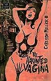 The Haunted Vagina / Ugly Heaven: Bizarro-Fiction