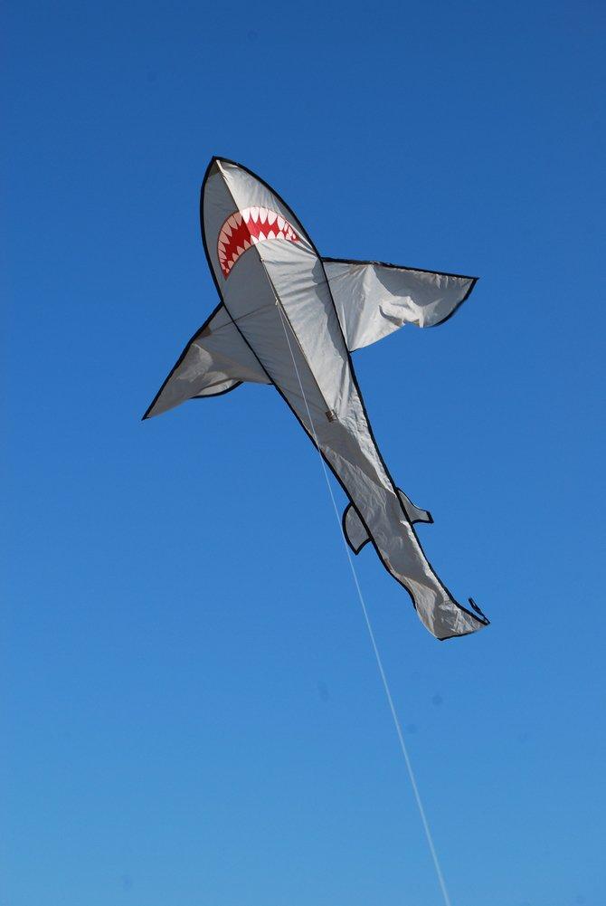 Premier Kites Easy Flyer Shark Kite with String 44304