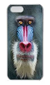 Big Face Mandrill Baboon PC Case Cover for iPhone 5 and iPhone 5s Transparent