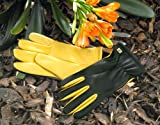 Gold Leaf Dry Touch Gloves - Ladies