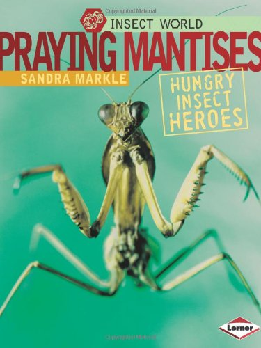Praying Mantises: Hungry Insect Heroes (Insect World)