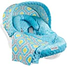 Carseat Canopy Whole Caboodle - Kennedy