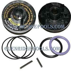 Jandy Push Pull Slide Valve O Ring Roll Pin Replacement Kit R0442100 Jandy Push
