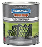 Masterchem Industries 43105 Hammered Paint, Gray