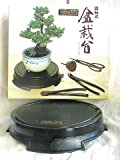 Joshua Roth Bonsai Turntable, Appliances for Home
