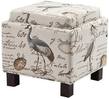 Madison Park Shelley Storage Ottoman