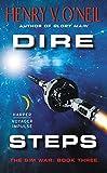 Dire Steps The Sim War Book Three